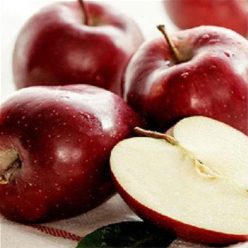深红色的花牛苹果